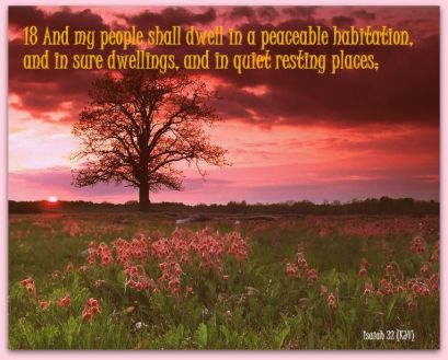 Image result for and my people shall dwell in a peaceable habitation