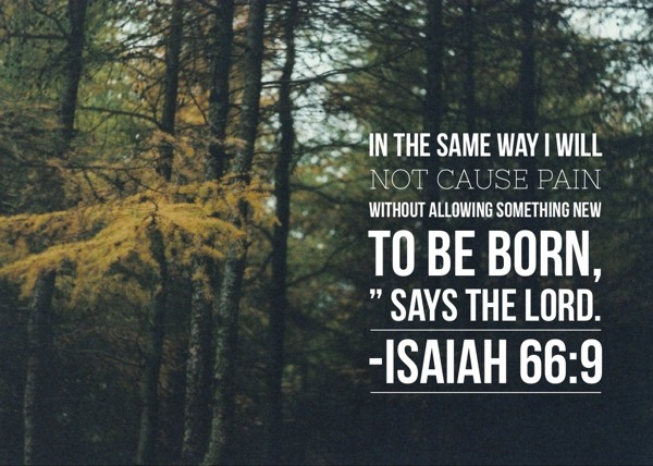 Image result for Isaiah 66:9