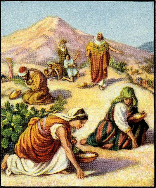 Image result for our fathers did eat manna in the desert